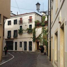 I can't help but taking pictures of ivy walls and green corners in town 🌱❤ #mycornerofitaly #padova #igerspadova #padua #veneto #igersveneto #urban #strolling #italy #italygram #likeitaly #italylovers #instamood #travel #travelingram #beautiful #cute #view #italia #lonelyplanet #italymagazine #bbctravel #wu_europe #instalike #city #ottobre #october #visit_italiadascoprire #volgopadova Ivy Wall, Italy Magazine, Lonely Planet, Taking Pictures, October, Walls, Europe, Urban, City