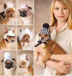 DOG HATS & BONNETS Sewing Pattern  Three Sizes ~ last one! SOLD. Visit etsy.com/shop/patterns4you for more pet patterns.