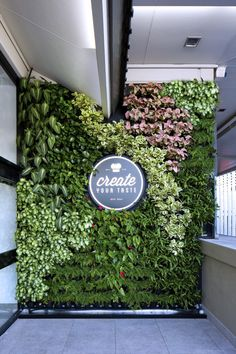 McDonalds Annerley by Vertikal Extraordinary vertical gardens for inspiring design projects au Jardin Vertical Diy, Jardin Vertical Artificial, Vertical Garden Plants, Vertical Garden Design, Indoor Plants, Indoor Outdoor, Vertikal Garden, Plantas Indoor, Moss Wall