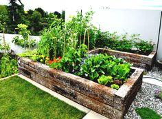 find this pin and more on garden garden plot ideas garden home