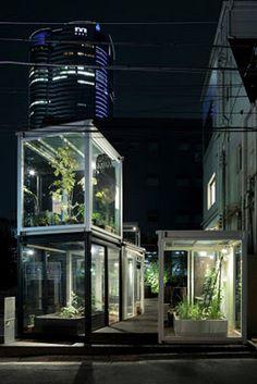 Huerto Urbano: Huertos urbanos en un restaurante de Tokio