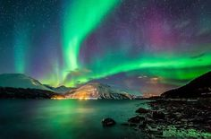 The Aurora Borealis illuminates the sky of Kafjord in northern Norway. Northern Lights Norway, See The Northern Lights, Northen Lights, Tromso, Space Images, Images Wallpaper, Wallpapers, Natural Phenomena, Beautiful Sky