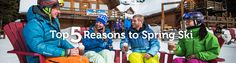 Ski resorts in the Canadian Rockies run operations until mid-May! Here are our 5 reasons you need to come spring skiing in Banff & Lake Louise this year. Ski Season, Ski Resorts, Spring Is Coming, Canadian Rockies, Banff, Skiing, Seasons, Ski, Seasons Of The Year