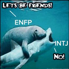 I am the INTJ and my husband is the ENFP. This describes our relationship perfectly!