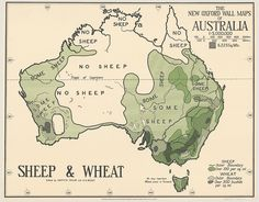 But where is the green sheep? Old maps put the art in cartography - ABC News (Australian Broadcasting Corporation) Map Of Continents, Australian Sheep, Maps Design, New Oxford, Pictorial Maps, Australia Map, Digital Storytelling, Wall Maps, Vintage Maps