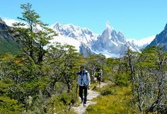 National Day of Trekking The #town of El Chalten in somewhere of Patagonia region of Argentina each March is prepared for a new edition of the National #Festival #Trekking, an event that brings #athletic #events and#cultural #shows. Check your #Travel   #Tour  #Packages   #Vacations  at #ElCalafate #ElChalten#TrekkingDay   #Patagonia  in #Argentina
