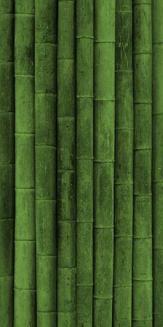 Iphone Wallpaper Green, Nature Wallpaper, Wallpaper Backgrounds, Bamboo Wallpaper, Patterns In Nature, Textures Patterns, Mint Green Aesthetic, Bamboo Texture, Shades Of Green