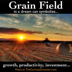 In a dream, a field of grain or other crop can have these meanings...   More at TheCuriousDreamer.   #DreamMeaning #DreamSymbol