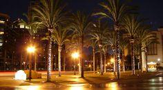 Little Italy, San Diego