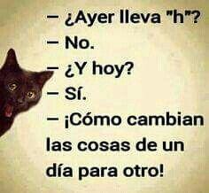 Así es - Sarcasm Meme - Sarcasm Meme ideas - Así es The post Así es appeared first on Gag Dad. Sarcasm Meme, Funny Jokes, Hilarious, Fun Funny, Spanish Jokes, Spanish Lessons, Mexican Humor, Humor Mexicano, Memes In Real Life