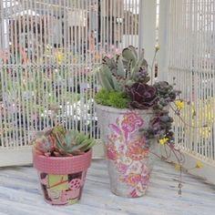 Decopatch☘My work☘ 「植物の器をデコパッチでデコレーションしましょう!」☘ 横浜市都筑区の河野自然園で4月17日(日)に講習会を開催します。 写真は私がデコパッチした鉢に河野自然園さんで多肉植物の寄せ植えを作って頂いた物です💕 みなさんもデコパッチをした器に好きな植物を選んで小さな寄せ植えを作ってみませんか?!😊 詳細・お申し込みはこちら河野自然園HPからどうぞ↓ http://www.kyukon.com/info3/decopa/ (リンク貼れなくてごめんなさい) ご質問はダイレクトメッセ送って頂いても大丈夫です☘ #デコパッチ #decopatch #デコパージュ#decoupage #ハンドメイド #インテリア雑貨 #homedco #diy女子#ワークショップ#講習会 #instahandmade #photo #植物 #リメイク #リメイク鉢 #remake #gardening #ガーデニング #たにく #ガーデニング雑貨 #remakecan #多肉チャン倶楽部 #寄せ植え #都筑区 #河野自然園 #多肉植物 #リメイク缶 #横浜…