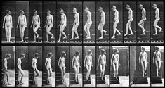 Female nude motion study by Eadweard Muybridge (2) - Cronofotografia - Wikipedia