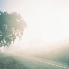 This looks really pretty. I wish I could take a picture like this, with the early morning sun and the fog hitting the road. Beautiful!