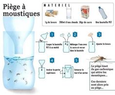 Viral Randomness… Don't spend lots of money on mosquito sprays when you can make this simple and cheap solution. We've discovered this little infographic explaining how to make th… Mosquito Trap, Tips & Tricks, Home Hacks, Clean House, Good To Know, Cleaning Hacks, How To Plan, How To Make, Planer