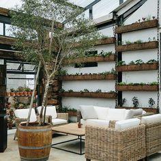 Hanging gardens @ blueberry cafe -KZN midlands -S.Africa ( int.design Anatomy design)