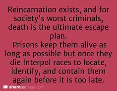 """Reincarnation exists, and for society's worst criminals, death is the ultimate escape plan. Prisons keep them alive as long as possible but once they die Interpol races to locate, identify, and contain them before it is too late."""