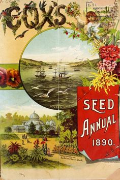 Cox's seed annual   1890