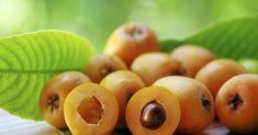 Beneficios de las hojas de níspero para su salud – e-Consejos