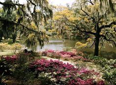 Carolina del Norte y Carolina del Sur – Jardines sin fronteras