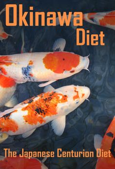 Okinawa Diet The Japanese Centurion's Diet http://mp2.us/pt-okinawa-diet Click Here to Read More Okinawa Island is part of the Japanese Ryukyu Islands that run from the southern tip of Japan almost to Taiwan. It is long known that the residents of Okinawa Island live longer than people anywhere else in the world. They're also healthier, suffer from less disease and have better mental health. By observing their lifestyle, it becomes clear that...Read More http://mp2.us/pt-okinawa-diet