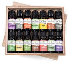 Top 14 Essential Oil Set Includes 100 Pure Therapeutic Grade Oils of Bergamot Clary Sage Cinnamon Eucalyptus Grapefruit Lavender Lemon Lime Patchouli Peppermint Rosemary Spearmint Orange  Tea Tree 10 ml each -- More info could be found at the image url.
