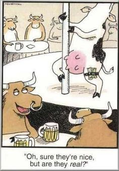 funny jokes pictures cartoons - Google Search