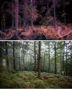 This VR project lets you experience Grizedale Forest through animal senses (by Immersive experience studio, Marshmallow Laser Feast (MLF)) See it in action in the video, and learn how it was created.