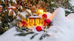 Weihnachtsdekoration für den Garten: festliche Grünflächen