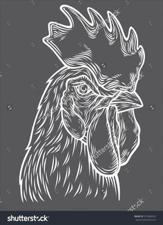 Hand drawn rooster head vector illustration. Sketch chicken portrait isolated on gray background. Symbol of new year 2017.
