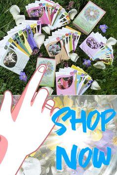 Helping Flowers Kartenset besteht aus 48 Karten mit tollen Blütenbildern und Botschaft der Blüte an dich! #kartenlegen #kartenset #blüte #botschaft #essenzen Polaroid Film, Flowers, Cartomancy, Woods, Pictures, Florals, Royal Icing Flowers, Blossoms, Bloemen