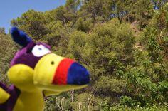 disfrutando de un bonito paisaje en los Montes de Málaga