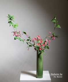 Develop creative skills to make beautiful living Japanese floral art. Ikebana, often translated as Japanese Flower Arrranging, is much more than flower arranging. It is a philosophy and life-style which helps you slow down and enjoy nature. Ikebana Arrangements, Floral Arrangements, Ikebana Sogetsu, Cylinder Vase, Japanese Flowers, Creative Skills, Arte Floral, Flower Arrangement, Flower Designs