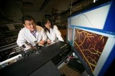 Neuroimaging technique captures cocaine's devastating effect on brain blood flow: Pictured-Stony Brook University Biomedical Engineering Professors Drs. Yingtian Pan, left, and Congwu Du, developed a novel 3D optical Doppler imaging tomography technique that captures the effects of cocaine restricting the blood supply in brain blood vessels. (Credit: Image courtesy of Stony Brook Medicine)