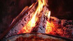 Wood fired lasagna [720x404] #foodporn #food #foodie #yummy #yum #foodgasm #nomnom #delicious #recipe