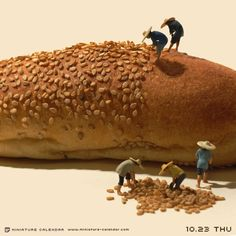 Harvest. miniature photography - incredibly enchanting and surreal worlds made…