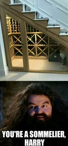 25 Best Funny Photos for Thursday. Serving only the best funny photos in 2019 that will help you laugh today. Funny Photos Of People, Best Funny Photos, Funny Pictures, Harry Potter Memes, Color Inspiration, Future House, Funny Memes, Funny Animals, Bricolage