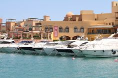 Marina, also Marina El Alamein (Arabic: مارينا العلمين), ancient Leukaspis or Antiphrae, is an up-scale resort town catering mainly to Egyptian elites. It is located on the northern coast of Egypt, with an 11 km (6.8 mi) long beach, about 300 km (190 mi) away from Cairo, in the El Alamein area.
