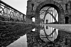 reflections - Nikon D7000