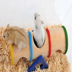 TAILUP Pet Home Accessories Rainbow Barrel Hamster Toys Sport Wooden Porous Design Upturned Small Pet Supplies Play Place Cute