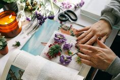 UO DIY: How to Press and Frame Flowers - Urban Outfitters - Blog