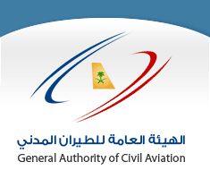 نموذج سيرة ذاتية وورد مختصرة doc عربي وانجليزي Cartoon Songs, Crown Pattern, Civil Aviation, Civilization, Author, Writers