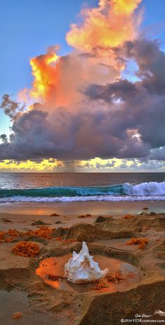 Left Behind by Justin Kelefas from Singer Island Florida 2014 by HDRcustoms (very busy) lone shell, dramatic thunderhead at sunrise, Ocean Reef Park, Singer Island, Florida