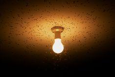 Il·luminar