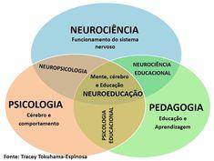 A Neuroeducação não é uma nova área do conhecimento. Ela trata da junção dos conhecimentos da psicologia, educação e neurociência.