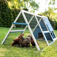 Chickens love relaxing and roosting in the Advantek A-Frame Chicken Coop . This beautiful hutch gives a safe, spacious living space for chickens. A Frame Chicken Coop, Small Chicken Coops, Portable Chicken Coop, Best Chicken Coop, Backyard Chicken Coops, Building A Chicken Coop, Chicken Runs, Chickens Backyard, Chicken Coop With Run