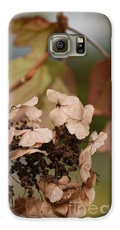 Faded Autumn Hydrangeas Galaxy S6 Case by Rowena Throckmorton. Protect their new iPhone or Galaxy with an impact-resistant, slim-profile, hard-shell case. The image is printed directly onto the case and wrapped around the edges for a beautiful presentation.