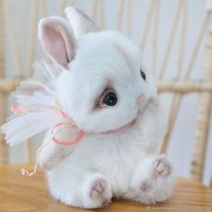 Teddy Bear Clothes, Teddy Toys, Cute Stuffed Animals, Cute Baby Animals, Organic Baby Toys, Rabbit Toys, Bunny Plush, Plush Animals, Soft Sculpture