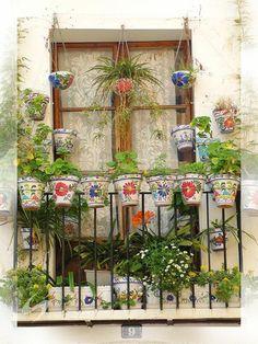 Janela e varanda com vasos coloridos e belas folhagens