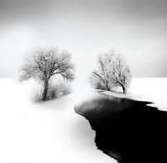 Dreamy Black And White Photography_1