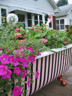 tub as planter on patio